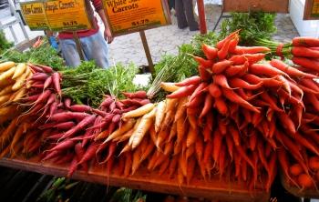 Морковные сорта.