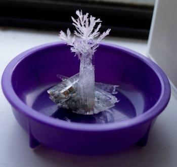Кристаллы из соли.