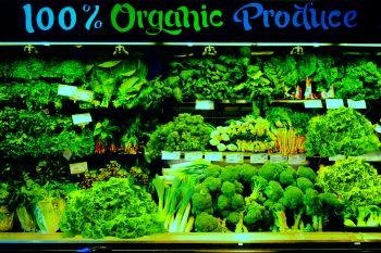 Тепличная зелень приносит стабильный доход.