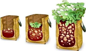 Эффективное выращивание картошки.